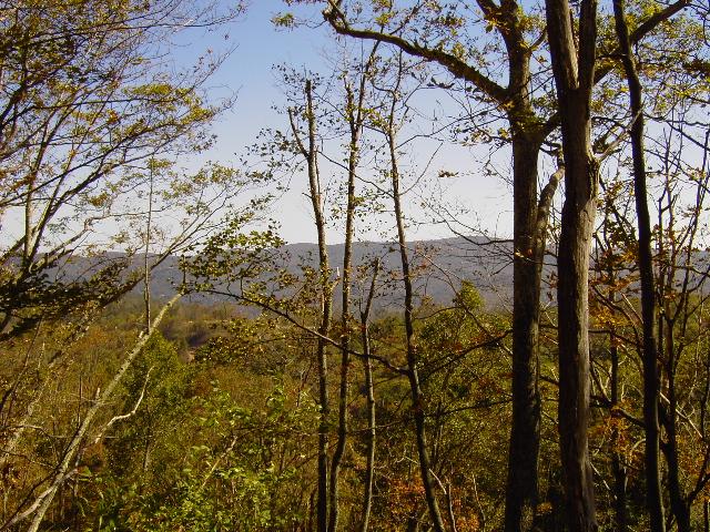 cabin_huntersridge4.JPG
